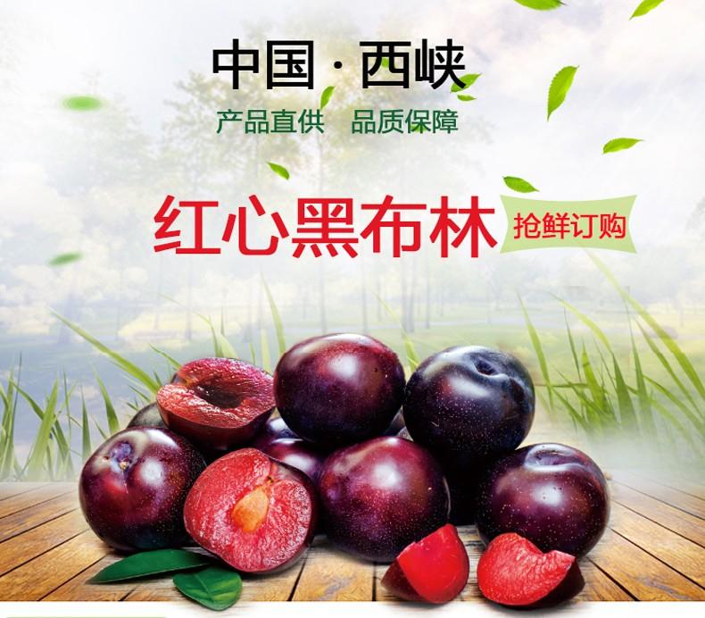 帆儿庄园 新鲜水果 进口黑布林李子孕妇水果酸甜多汁 5斤装