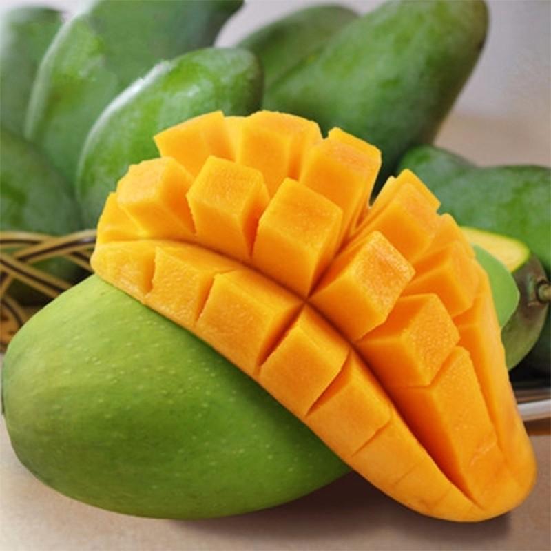 芒果新鲜包邮广西大青芒10斤整箱当季新鲜水果批发